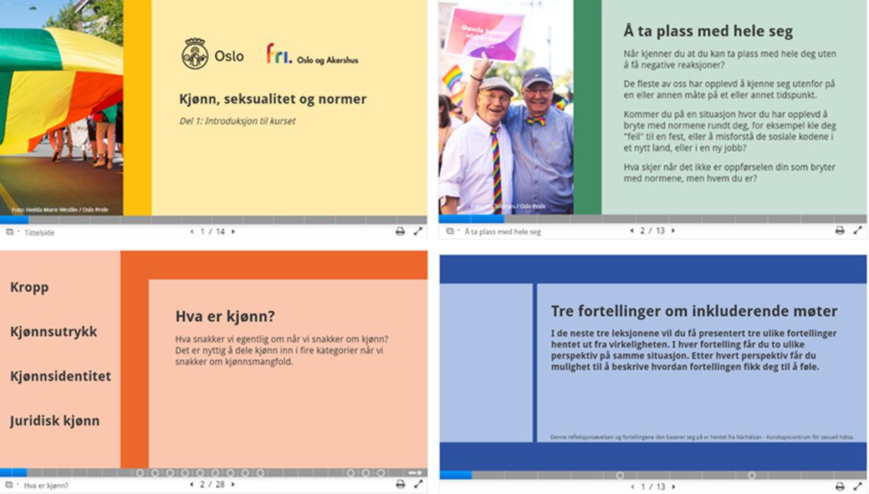 Nettkurs om kjønn, seksualitet og normer er tilgjengelig for ansatte og ledere i Oslo kommune, samt landets øvrige kommuner og fylkeskommuner som benytter KS Læring.
