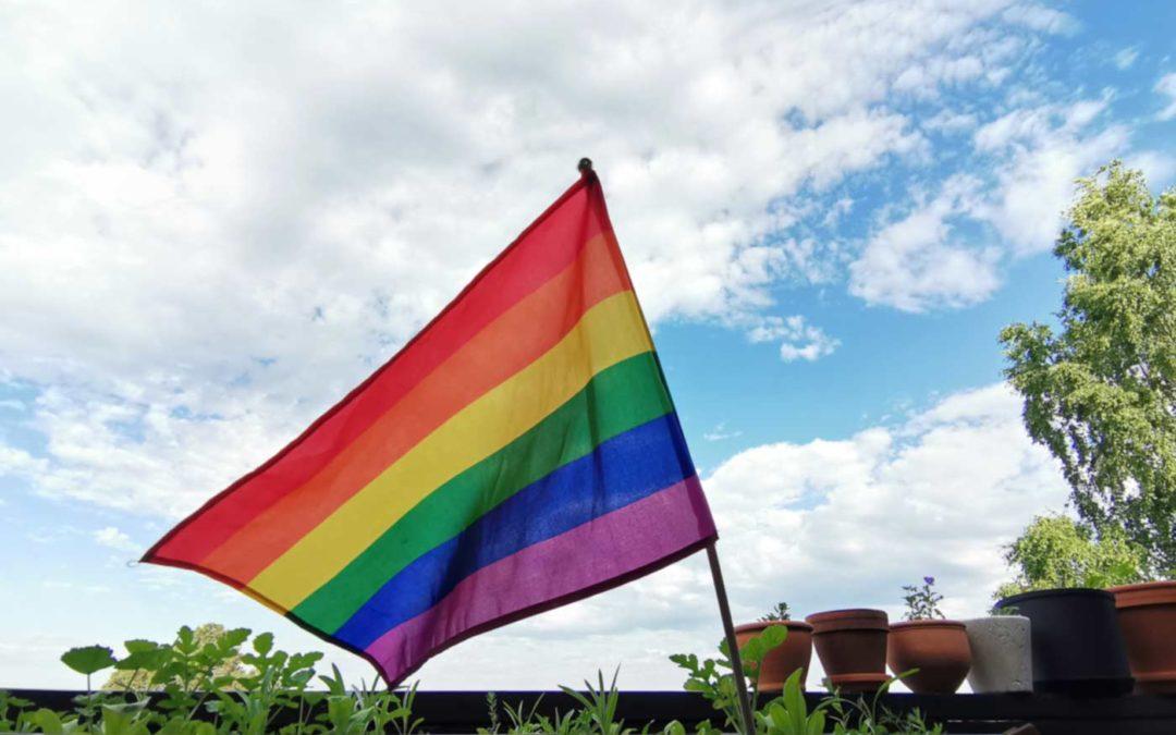 Regnbueflagget - PRIDE