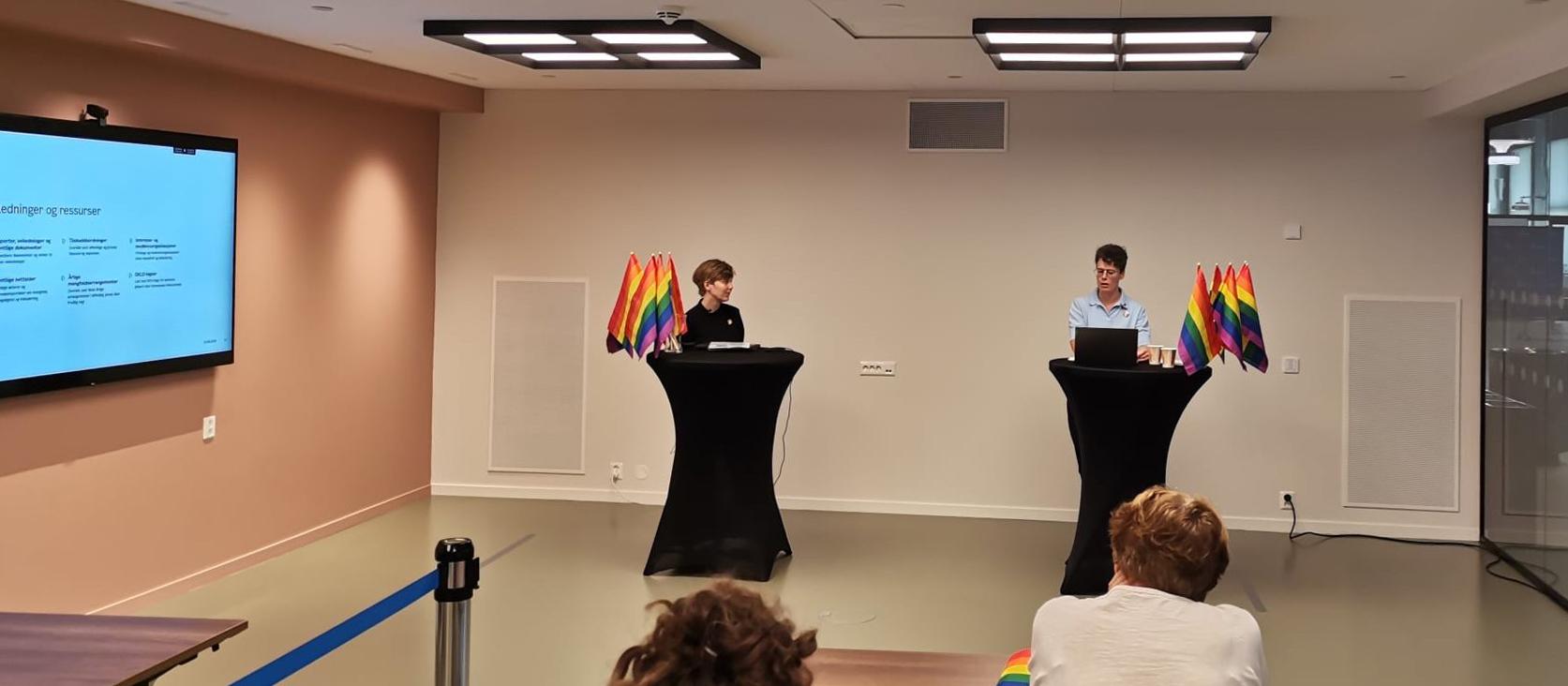 2020: Hanna og Janne holder webinar fra Rådhuset i anledning lansering av ny handlingsplan Stolt og Fri og Oslo Pride 2020.